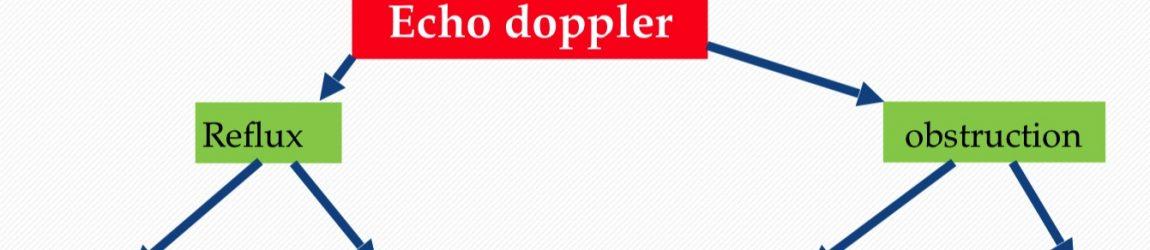 Echo doppler et plaie chronique des membres inférieurs