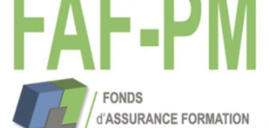 Réunion FAF-PM : La Télémédecine